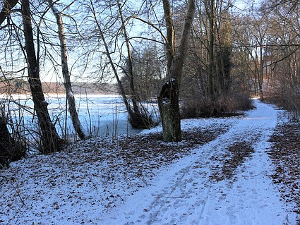 Der Zenssee im Winter